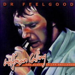Dr feelgood homework